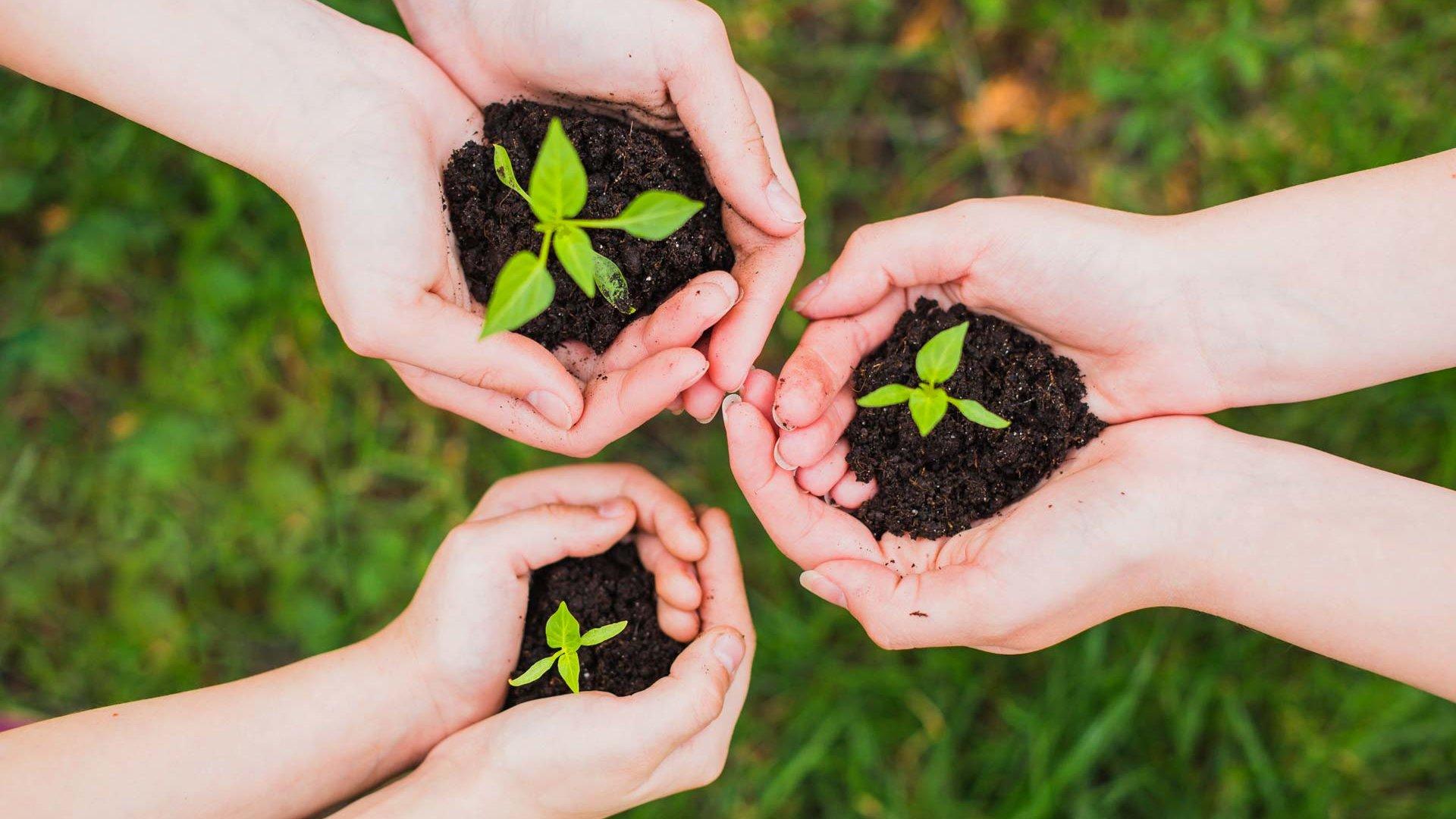 ateliers artisans du partage formations vert écologique permaculture